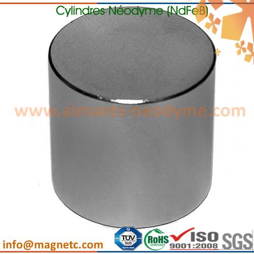 forte aimant n odyme tige cylindre barre cylindres n odyme 50x60mm n50 ni xfmag aimants. Black Bedroom Furniture Sets. Home Design Ideas