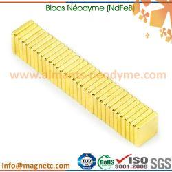 aimants carrés néodyme-fer-bore (NdFeB)